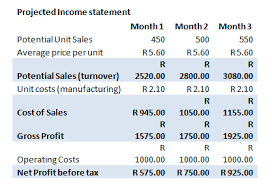 Business Plan Financials Template Financial Statements Help With
