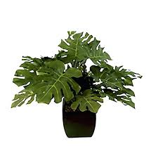 artificial house plants artificial potted plants zebra leaf greenery artificial indoor plants uk small