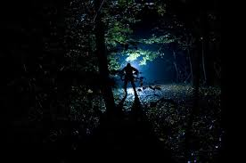 camping in the woods at night. Simple Woods Woods At Night Campground Nightmare On Camping In The Woods At Night