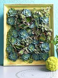 better homes and gardens picture frames interior make a living succulent picture better homes gardens expert better homes and gardens picture frames