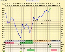 Positive Bbt Charts The Most Normal Looking Chart Ive Ever Had Got A Faint