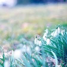 Сочинение на тему Весна Сочинение на тему Весна пришла