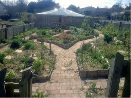 Small Picture Gardening Courses Ireland Container Gardening Ideas