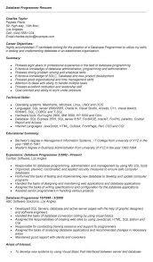 perl programmer resume it programmer resume computer programmer resume example programmer