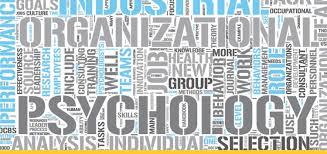 industrial psychology master of industrial organizational psychology hofstra new york