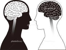 人間の脳 イラスト素材 5515391 フォトライブラリー Photolibrary