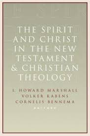 the spirit and christ in the new testament and christian theology the spirit and christ in the new testament and christian theology essays in honor of