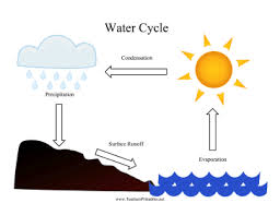 Water Cycle Chart Teachers Printables