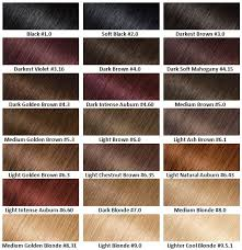 Well Hair Color Chart Garnier Olia Oli Powered Hair Colour In 2019 Hair Color