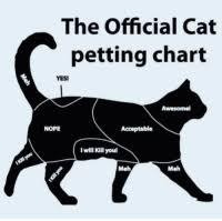 Chonk Chart For Cats 25 Best Petting Chart Memes Chart Memes