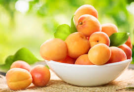Apricot For Babies Nutritional Value Health Benefits Recipes