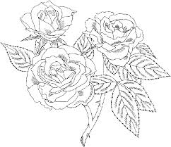A larger version will open in a new tab or window. Rose Coloring Pages Animal Coloring Pages Rose Coloring Pages Coloring Pages