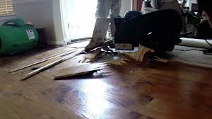 wood floor stripper. Removing Hardwood Floor With A Scraper Youtube Throughout Nice Stripper Applied To Your Wood