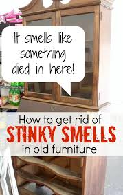 How to gross smells out of old furniture Atta Girl Says