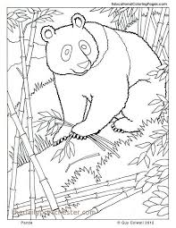 Sloth Coloring Page Awesome Panda Coloring Zoo Animals Coloring Cute