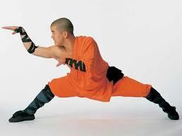 Kung fu Snake <b>style</b>