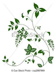 Vine Pattern Mesmerizing Drawing Of Green Flower And Vine Pattern In A White Background