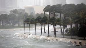 Картинки по запросу фото урагану марія