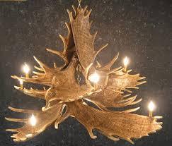 moose ten antler chandelier with downlight
