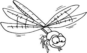 Kleurplaten En Zo Kleurplaten Van Insecten