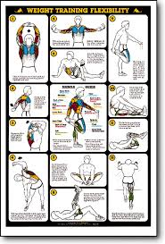 Weight Training Chart With Pictures Weight Training Flexibility Fitness Chart F13