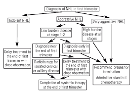 The Treatment Of Hodgkins And Non Hodgkins Lymphoma In