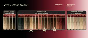 Schwarzkopf 10 Minute Hair Color Chart News Igora Color10 Permanent Hair Color Nottsfoodie