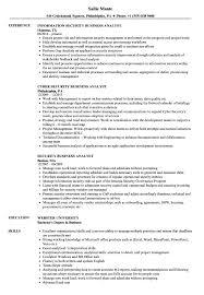 Security Business Analyst Resume Samples Velvet Jobs Sample Sevte