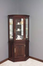 Living Room Cabinet With Doors Living Room Cabinets With Glass Doors Living Room Design Ideas