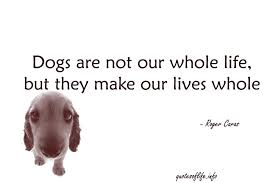 Friends Change Quotes Adorable Whole Life Quote Awe Inspiring Dogs Are Not Our Whole Life But They