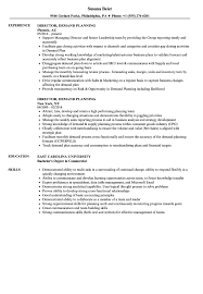 Director Demand Planning Resume Samples Velvet Jobs