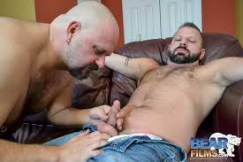 Free hairy gay bear movies