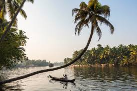 Things to Do in Kerala: The Ultimate Top 16 Attractions