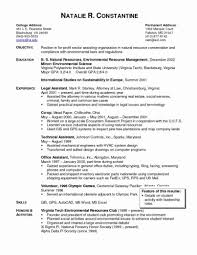 Template Sample Cover Letter Law Attorney Resume Corporate Lawyer