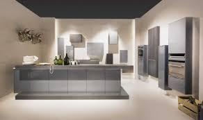 Modern Kitchen Designs 2014 Silver Cabinetry Kitchen Design With Panel Appliances Also Granite