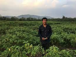 เกษตรกร จ.ลพบุรี หันปลูกมะเขือขาวหยกสร้างรายได้ ส่งลูกเรียนจบปริญญา 2 คน  โดยไม่ต้องกู้เงินใคร - เส้นทางเศรษฐี