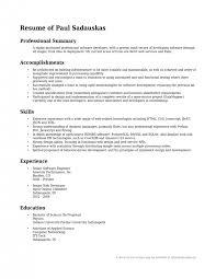 resume resume summary on resume example magnificent professional summary on resume qualifications summary resume example resumesummary example of summary in resume
