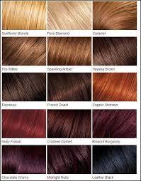 Hair Color Chart Burgendy Hair Loreal Hair Feria Hair