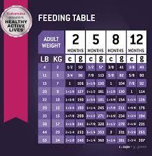 Eukanuba Puppy Lamb Rice Formula Dry Dog Food 30 Lb Bag