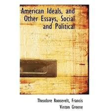 socialization essay political socialization essay
