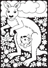 Small Picture Best Kangaroo Coloring Pages Cool Ideas 4245 Unknown