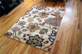 affordable area rugs 5x7