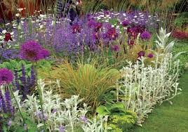 perfect perennial border plants