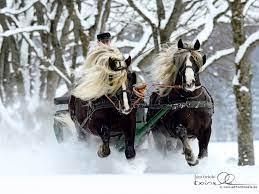 Christmas Horse Desktop (Page 1) - Line ...