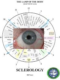 Iridology Chart Pdf Iridology Pdf Buscar Con Google Medicina Iridology