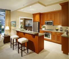Small Picture Open Kitchen Designs In Small Apartments Kitchen Design