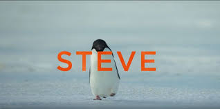 Image result for disneynature penguins