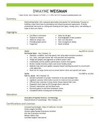 hair stylist resume info salon resume sample 10 hair stylist resume sample amp writing