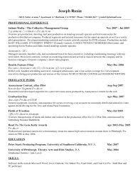 Fill In Resume Online Free Cv Resume Online Fungramco 100