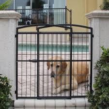 modern dog fences for outside